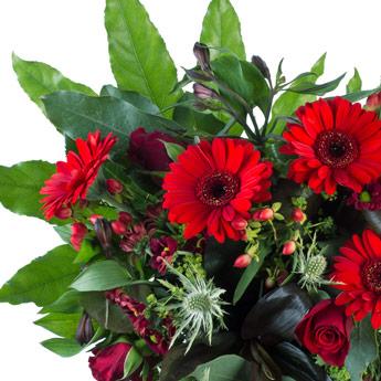 boeket-rode-bloemen…